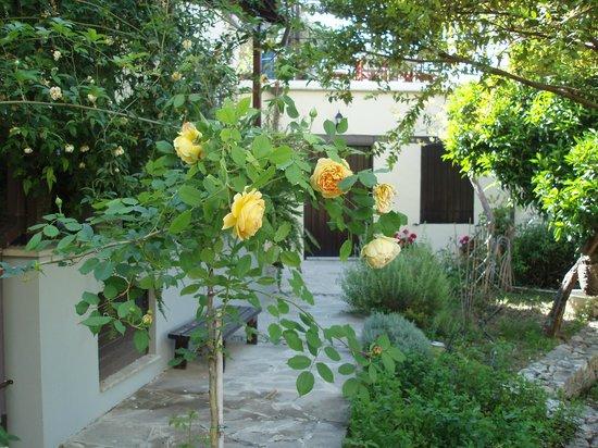 Vasilion Agrotourism: garden