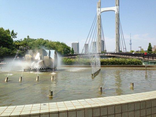 Kiba Park: 公園内にかかる「木場公園大橋」越しに見える東京スカイツリー。肉眼ではもっと大きく見えます。