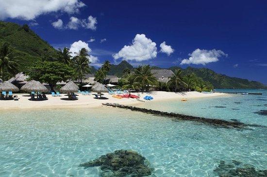 Hilton Moorea Lagoon Resort & Spa: Hotel Beach