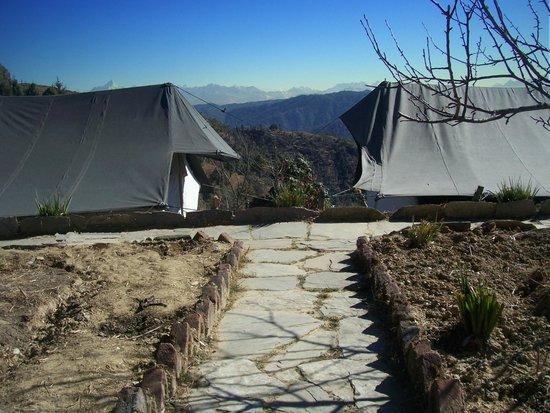 Wildrift Adventures -  Camp Purple Mukteshwar: accomodation