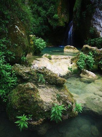Nacedero del Urederra: Así nace un río