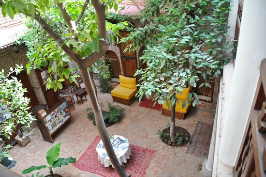 Riad Hidden : patio