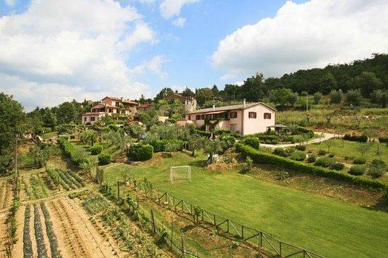 Agriturismo Marilena la Casella