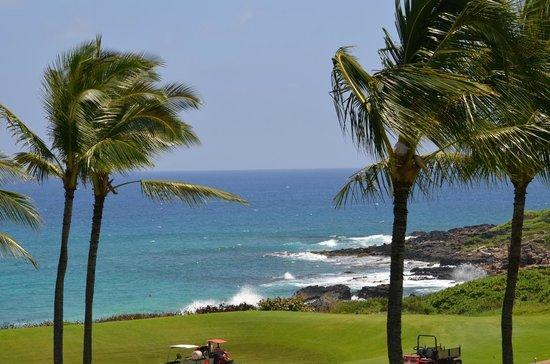 Grand Hyatt Kauai Resort & Spa: View from Room
