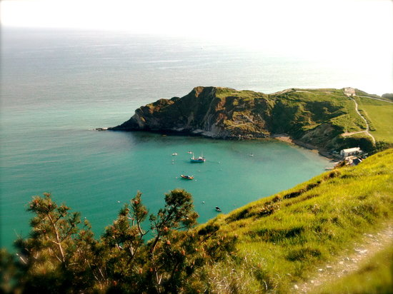 Bindon Bottom B&B: Lulworth Cove from Bindon Hill
