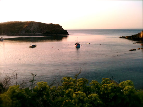 Bindon Bottom B&B: Lulworth Sunrise