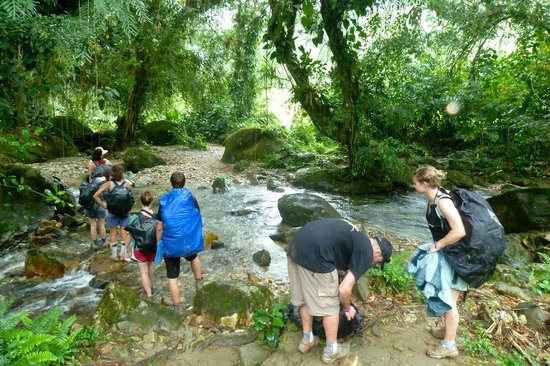 Palomino, Colômbia: Expediciones por la Sierra NEvada