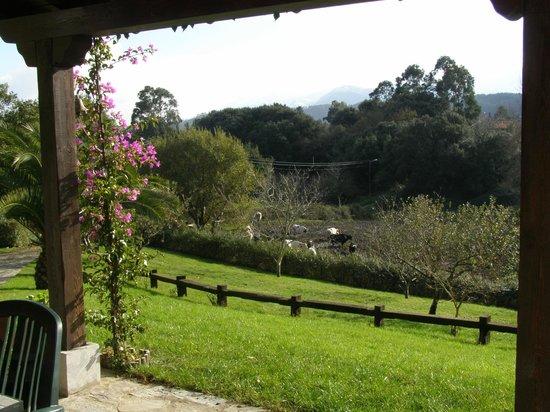 El Corral del Acebo: vista del jardín desde el proche