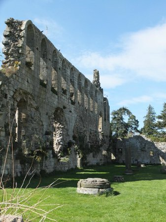 Jervaulx Abbey: The Main section