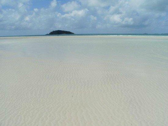 Whitehaven Beach: A.m.a.z.i.n.g.