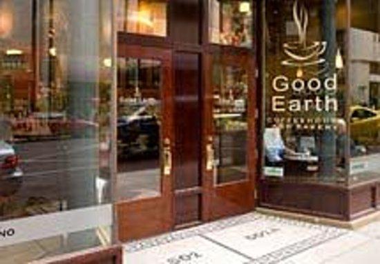 Good Earth Cafe - Lougheed Block