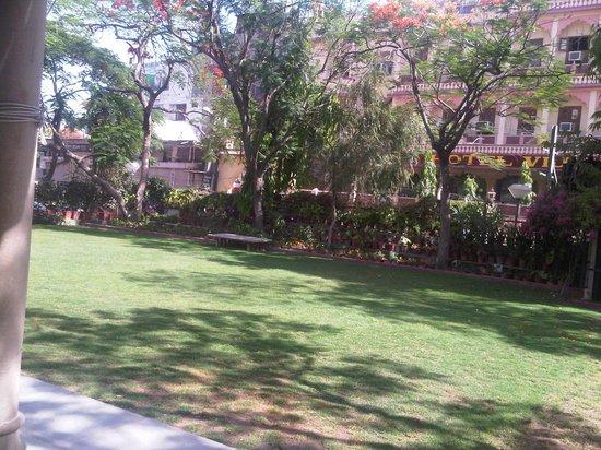 Arya Niwas: Lawn