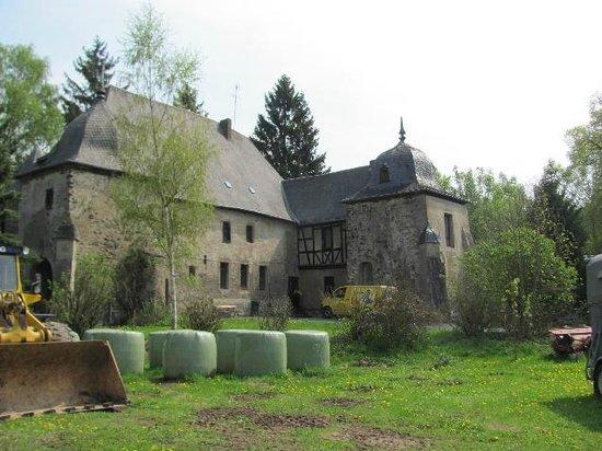 Burg Kray (Krayer Hof)