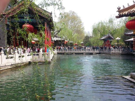 Xinfusheng Xiangyun Hotel: Spring