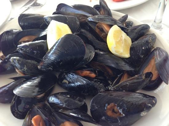 Hotel-Restaurante San Miguel: deliciosos clotxines (mejillones) al vapor