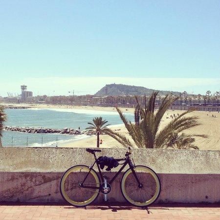 Deviant Bikes Bike At The Beach
