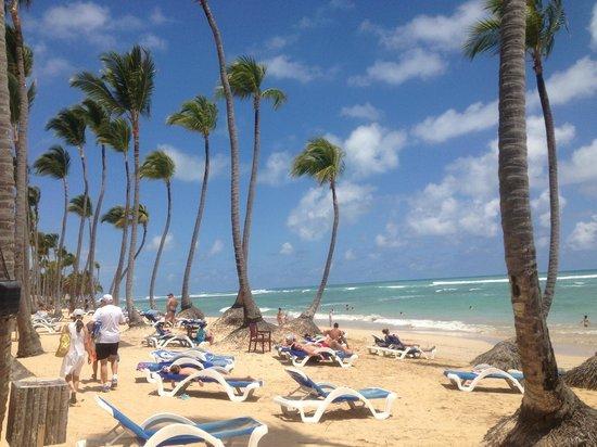 Sirenis Punta Cana Resort Casino & Aquagames: Sirenis Cocotal beach