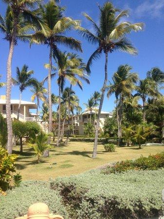 Sirenis Punta Cana Resort Casino & Aquagames: Sirenis Cocotal hotel