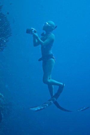 Wakatobi Dive Resort: Wonderwoman Ai Futaki!