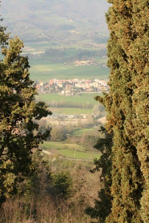 Villa Campestri Olive Oil Resort: Incredible views everywhere