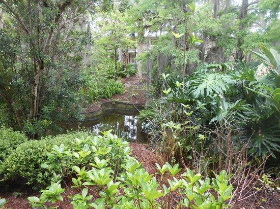 Alligator Bayou Room W Picture Of Disney 39 S Port Orleans Resort Riverside Orlando Tripadvisor