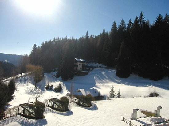 Alpine Sport & Wellness Hotel Viktoria: Winter sunny day