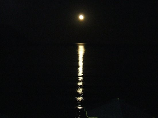 Moon Rising from Bottoms Up