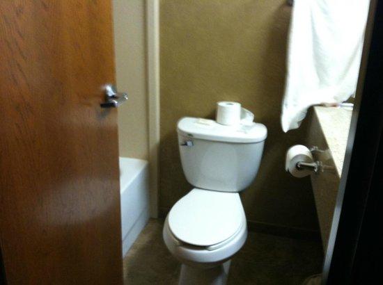 Ramada Plaza Omaha Hotel and Convention Center: Omaha's tiniest bathroom