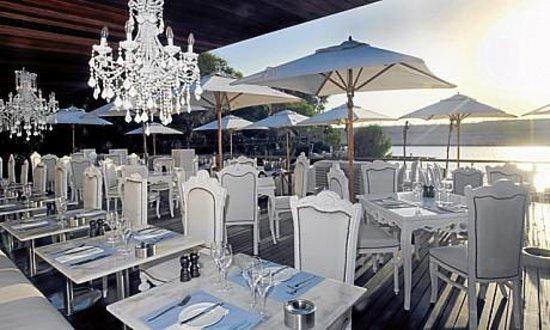 Blue Marlin Ibiza Uae Dubai Restaurant Reviews Phone
