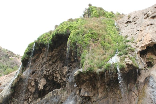 Sitting Bull Falls: out of nowhere water trickles down