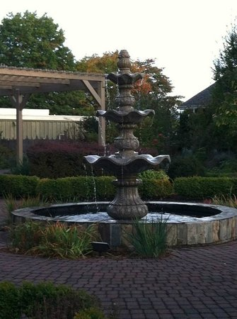 Village Green Resort: Fountain