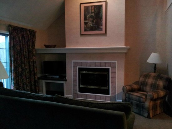 East Stroudsburg, PA: fireplace dvd tv all nice amenities in living space