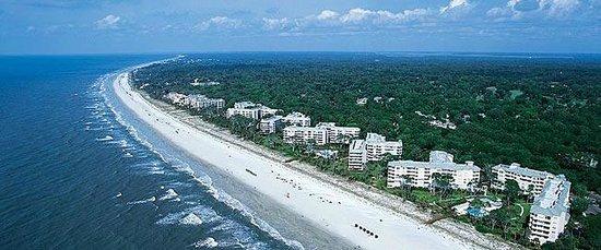 Palmetto Dunes Oceanfront Resort: Beach Aerial View