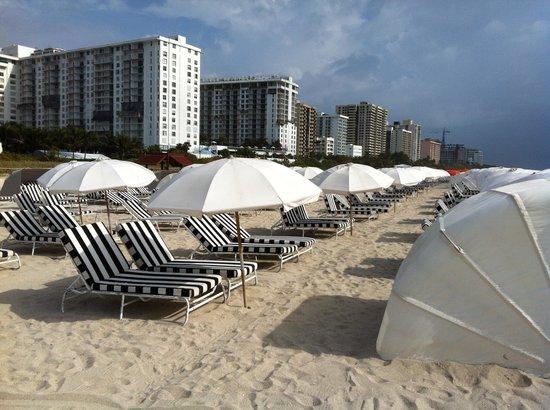 W South Beach: W hotel