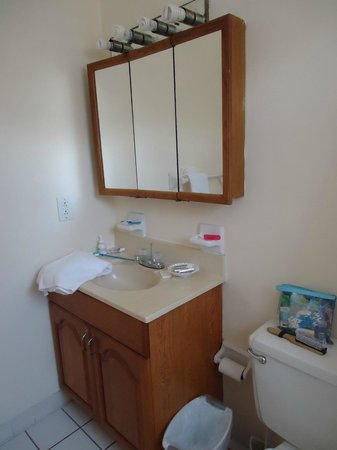 Shore Haven Resort Inn: Bathroom was decent size; toliet water was sorta yellow at times but at least it flushed!
