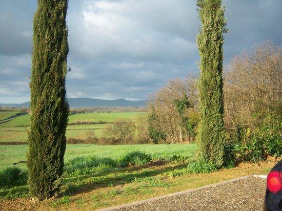 Borgo La Chiusa : View from property
