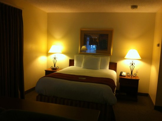 Chase Suite Hotel- Tampa: Comfy bed
