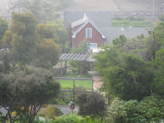 Stanford Inn by the Sea: Stanford Inn - overlooking the grounds