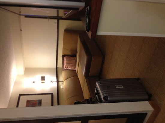 Hyatt Place Dulles Airport South: Living Room