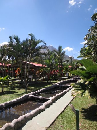 Termales Los Laureles: View of some of the pools, with the volcano