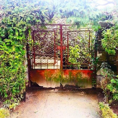 The Garden of Santa Barbara: An old door in the garden