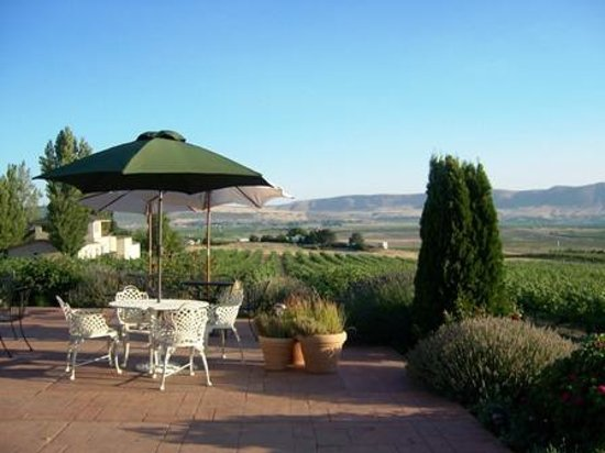 Tapteil Vineyard Winery: Patio for picnics