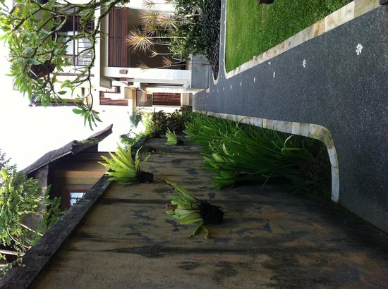 Nyoman Karsa Bungalows: Walkway to rooms