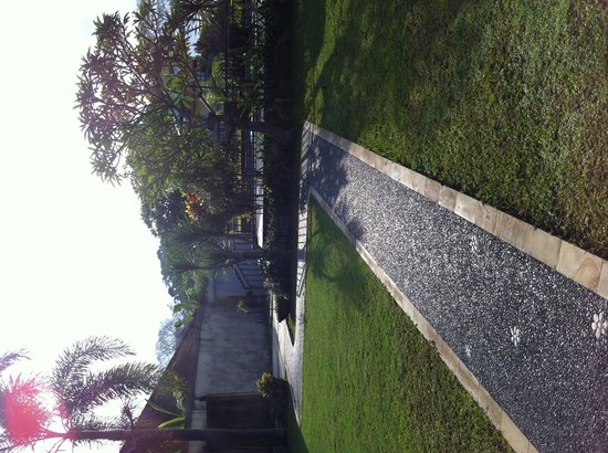 Nyoman Karsa Bungalows: Walkway to pool