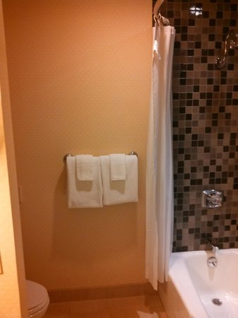 Harveys Lake Tahoe: Bathroom- Shower