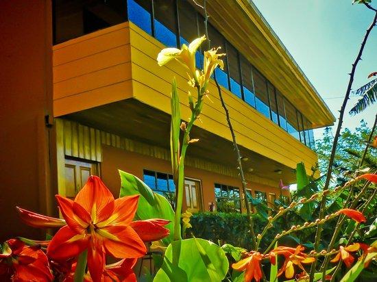 Hotel Cipreses Monteverde Costa Rica: 20´s
