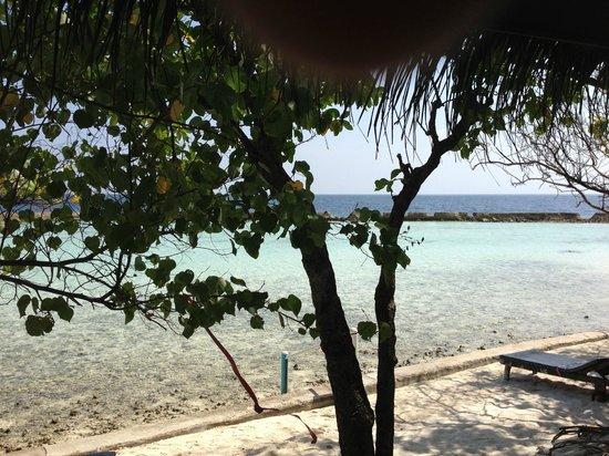 Ellaidhoo Maldives by Cinnamon : Encore une vue de la chambre