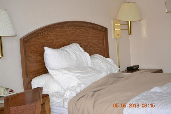 Days Inn Wilmington - Market Street : Queen Bed