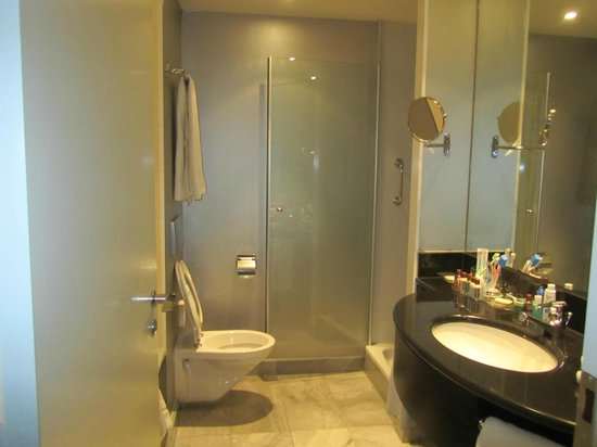 Sheraton Amsterdam Airport Hotel and Conference Center: The bathroom/toilet was spacious