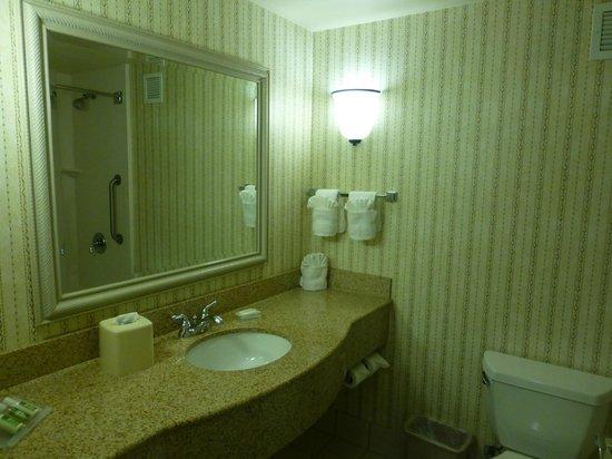 Hilton Garden Inn Orlando East/UCF Area: Bath